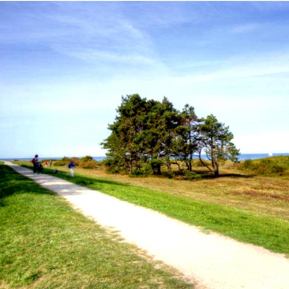 Radweg zum Strand